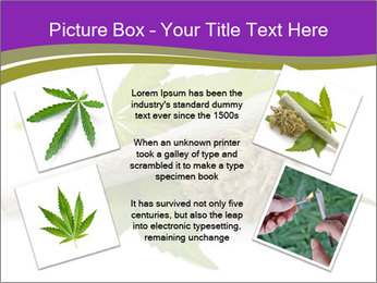 Cannabis PowerPoint Templates - Slide 24