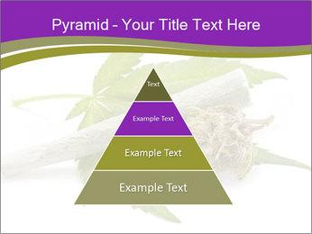 Cannabis PowerPoint Templates - Slide 30