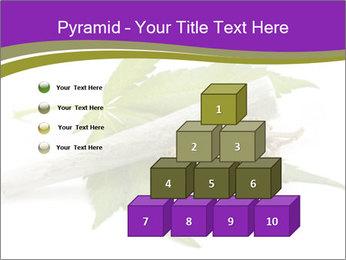 Cannabis PowerPoint Templates - Slide 31