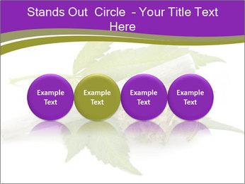 Cannabis PowerPoint Templates - Slide 76