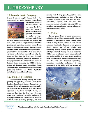 0000093361 Word Template - Page 3