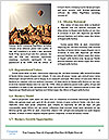 0000093361 Word Template - Page 4