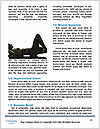 0000093369 Word Templates - Page 4