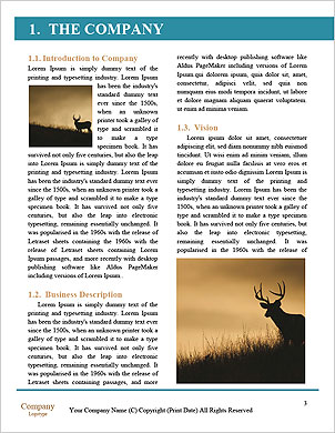 0000093380 Word Template - Page 3