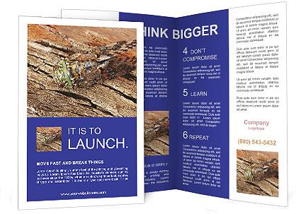 0000093383 Brochure Templates