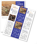 0000093383 Newsletter Template