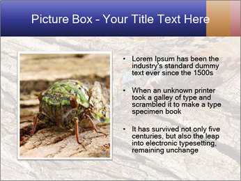 Green Cicada Camouflaged PowerPoint Templates - Slide 13
