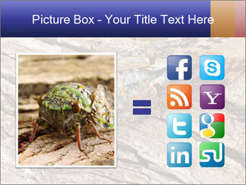 Green Cicada Camouflaged PowerPoint Template - Slide 21