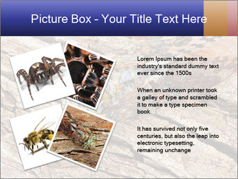 Green Cicada Camouflaged PowerPoint Template - Slide 23