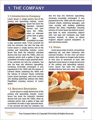0000093384 Word Template - Page 3
