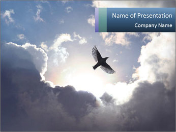 A bird PowerPoint Template