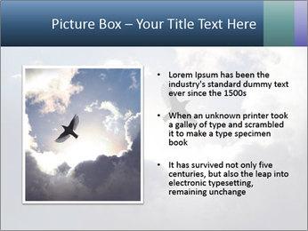 A bird PowerPoint Templates - Slide 13