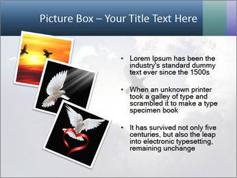 A bird PowerPoint Templates - Slide 17