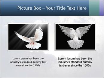 A bird PowerPoint Templates - Slide 18