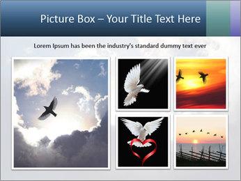 A bird PowerPoint Templates - Slide 19