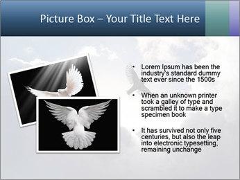 A bird PowerPoint Templates - Slide 20