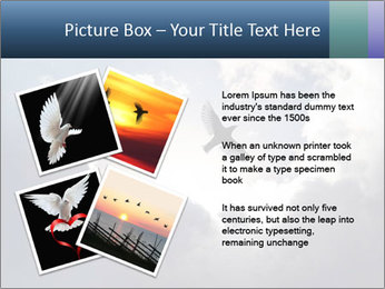 A bird PowerPoint Templates - Slide 23