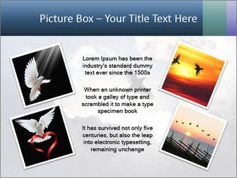 A bird PowerPoint Templates - Slide 24