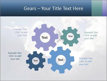 A bird PowerPoint Templates - Slide 47