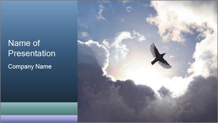 A bird PowerPoint Template