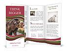 0000093389 Brochure Template