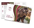 0000093389 Postcard Templates
