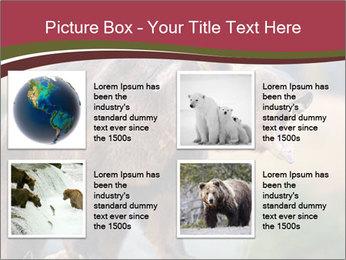 Brown Bear PowerPoint Templates - Slide 14