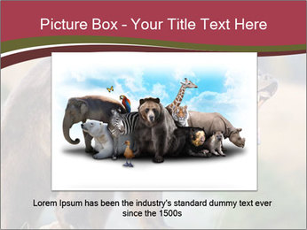 Brown Bear PowerPoint Templates - Slide 15