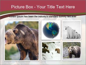 Brown Bear PowerPoint Templates - Slide 19