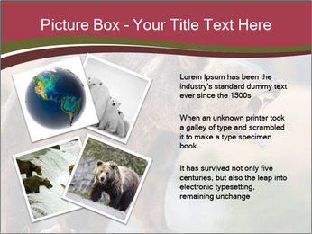Brown Bear PowerPoint Templates - Slide 23