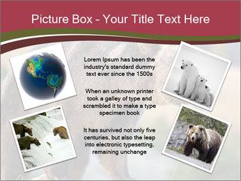 Brown Bear PowerPoint Templates - Slide 24