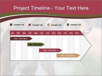 Brown Bear PowerPoint Templates - Slide 25