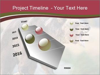 Brown Bear PowerPoint Templates - Slide 26