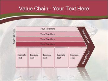Brown Bear PowerPoint Templates - Slide 27