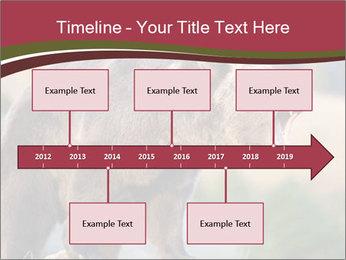 Brown Bear PowerPoint Templates - Slide 28