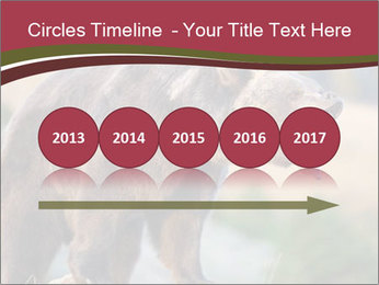 Brown Bear PowerPoint Templates - Slide 29