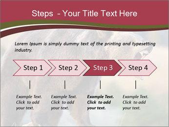 Brown Bear PowerPoint Templates - Slide 4