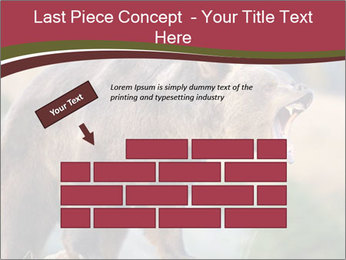 Brown Bear PowerPoint Templates - Slide 46