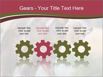Brown Bear PowerPoint Templates - Slide 48