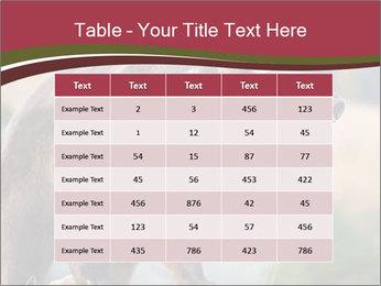Brown Bear PowerPoint Templates - Slide 55