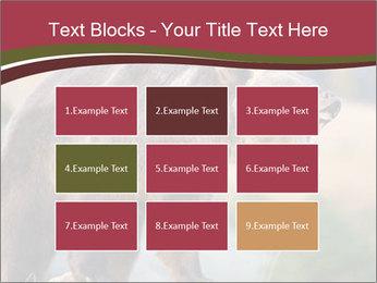 Brown Bear PowerPoint Templates - Slide 68