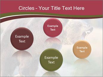 Brown Bear PowerPoint Templates - Slide 77
