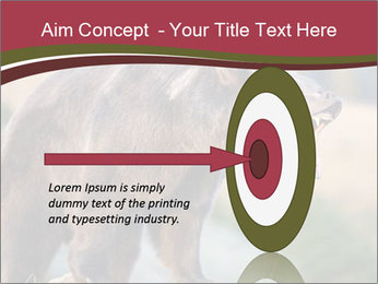 Brown Bear PowerPoint Templates - Slide 83