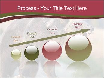 Brown Bear PowerPoint Templates - Slide 87