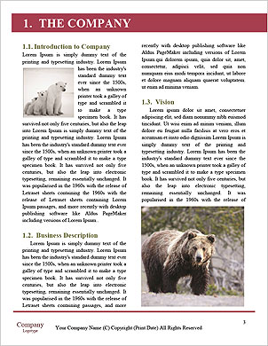 0000093389 Word Template - Page 3