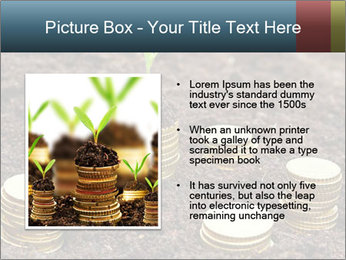 Money growth concept. PowerPoint Template - Slide 13