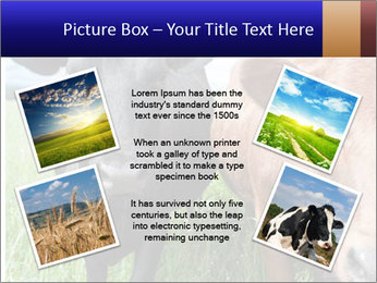 Two cows in the field PowerPoint Template - Slide 24