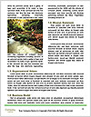 0000093398 Word Templates - Page 4