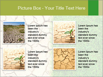 Half the frame PowerPoint Template - Slide 14