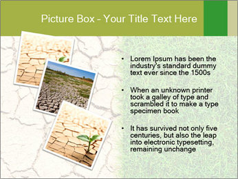 Half the frame PowerPoint Template - Slide 17
